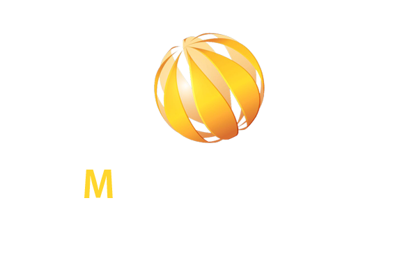 mlimousinen services